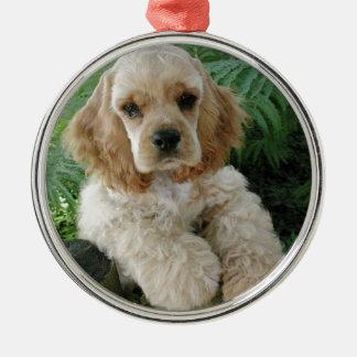 De Amerikaanse Hond van de Cocker-spaniël en de Zilverkleurig Rond Ornament
