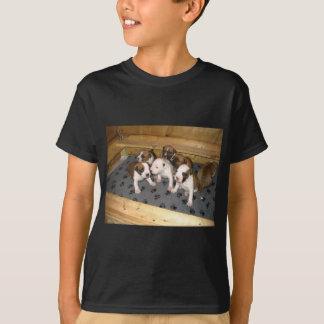 De Amerikaanse Staffordshire Terrier Hond van het T Shirt