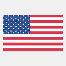 De Amerikaanse Stickers van de Vlag