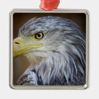 De Amerikaanse vogel van Eagle Zilverkleurig Vierkant Ornament
