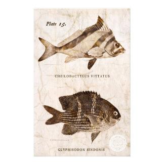 De Antiek Mariene Retro Oceaan Sealife van vintage Briefpapier