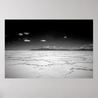 De Argentijnse Zoute Woestijn en de Bergen van Poster