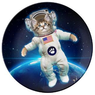 De astronaut van de kat - ruimtekat - de minnaar porselein bord