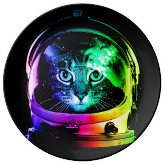 De astronaut van de kat - ruimtekat - grappige porseleinen bord
