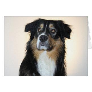 De Australische Liefde van Hello van de Hond van Kaart