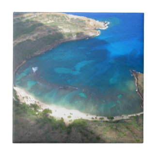 De Baai Hawaï van Hanauma Tegeltje