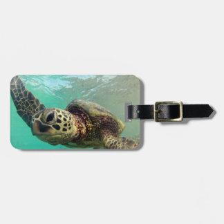 De Baai van Hanauma - Schildpadden van het Zee van Kofferlabels