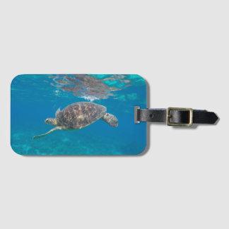 De bagagelabel van de Schildpad van Se