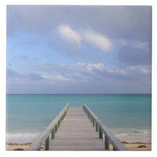 De BAHAMAS, Groot Eiland Bahama, Oostelijke Kant: Tegeltje