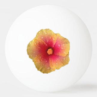 De Bal van de Pingpong van de hibiscus Pingpongbal