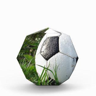 De Bal van de Voet van Soccer~ op gebied Acryl Prijs