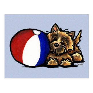 De Bal van het Strand van Terrier van de steenhoop Briefkaart