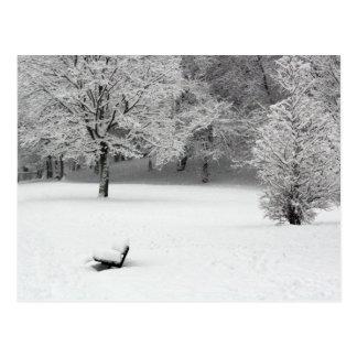 De bank en de bomen van de sneeuw briefkaart