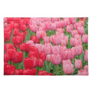 De bedden van de bloem van rode en roze tulpen placemat