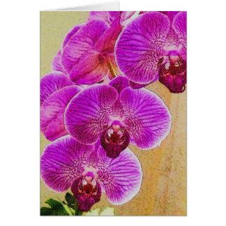 De Beloften van de orchidee kunnen worden Wenskaart