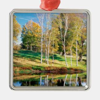 De Berk Vermont van bomen Zilverkleurig Vierkant Ornament