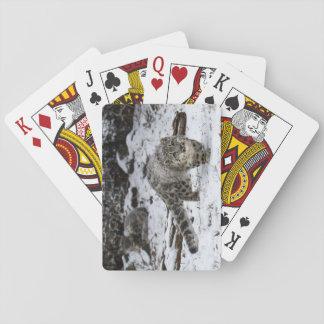 De Besluipende Vogels van de Welp van de Luipaard Speelkaarten