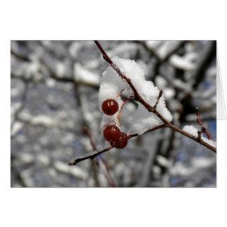 De Bessen van de winter Kaart