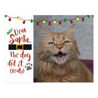 De beste Kerstman, de hond deed het - kat-Minnaar Briefkaart