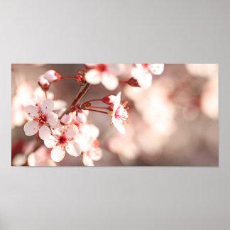 De Betovering van de lente Poster
