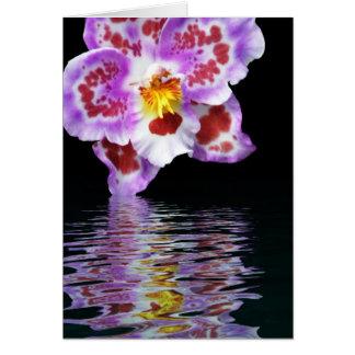 De Bezinning van de orchidee Kaart