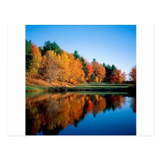 De Bezinningen Vermont van de herfst Briefkaart