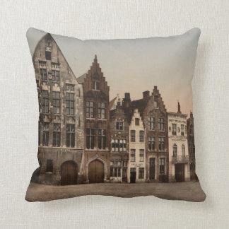 De Bibliotheek van Brugge, België Sierkussen