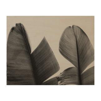 De Bladeren van de Boom van de banaan in Sepia Hout Afdruk