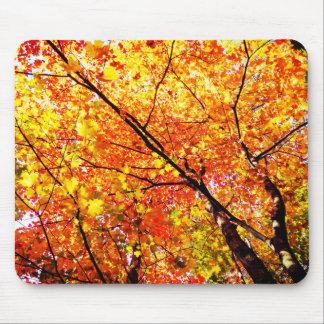 De Bladeren van de Boom van de herfst Muismat