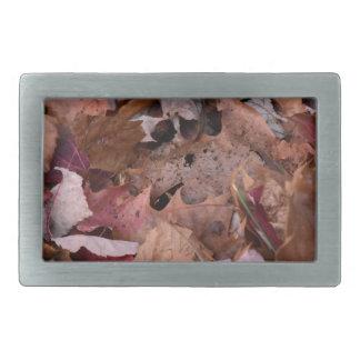 De bladeren van de herfst in de Rokerige Bergen Gesp