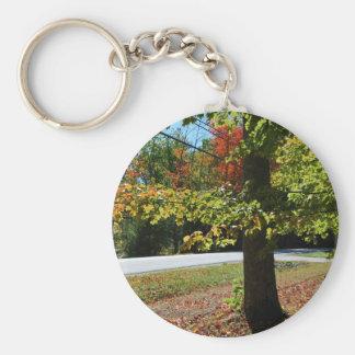 De Bladeren van de herfst in Maine Sleutelhanger