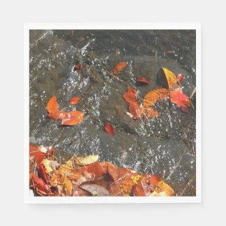 De Bladeren van de herfst in Waterval I de Papieren Servet