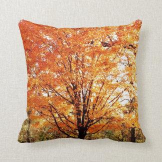 De Bladeren van de herfst op de Boom van de Sierkussen