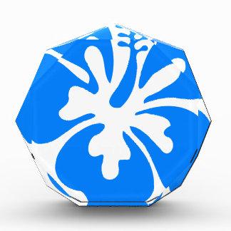 De blauwe Bloem van de Hibiscus Prijs