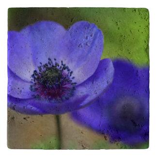 De blauwe Bloemen van de Papaver Trivet