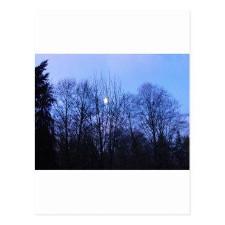 De blauwe Documenten van het Huwelijk van de Maan Briefkaart