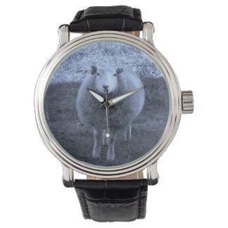 De blauwe en Witte schapen van de Moeder Horloge