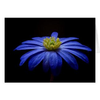 De blauwe Fotografie van de Kunst van de Anemoon Kaart