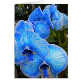 De blauwe Kaart van de Orchidee van de Aura