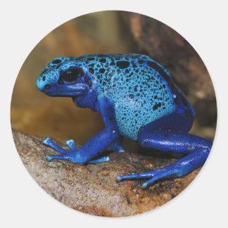 De blauwe Kikker Dendrobates Azureus van het Pijlt Ronde Sticker