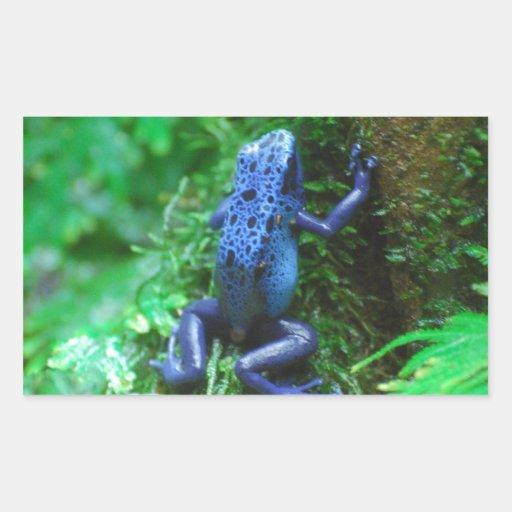 De blauwe Kikker van het Pijltje van het Vergift Rechthoekvormige Sticker