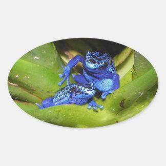 De blauwe Kikkers van het Pijltje van het Vergift Ovale Sticker