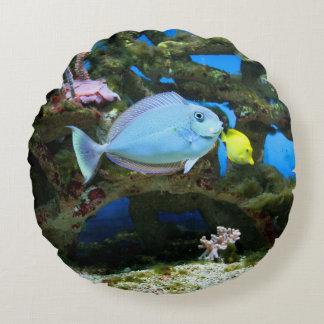 De Blauwe Vissen van het zee Rond Kussen