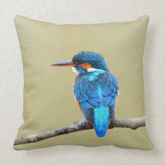 De blauwe Vogel van de Ijsvogel Sierkussen