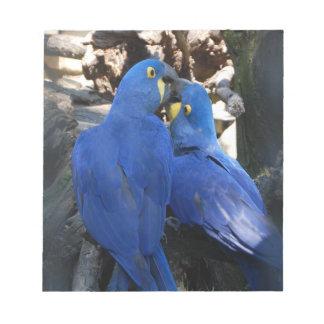 De Blocnote van papegaaien