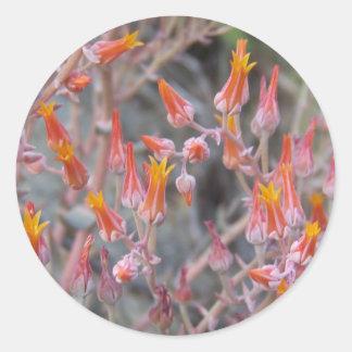 De Bloem van de cactus Ronde Sticker