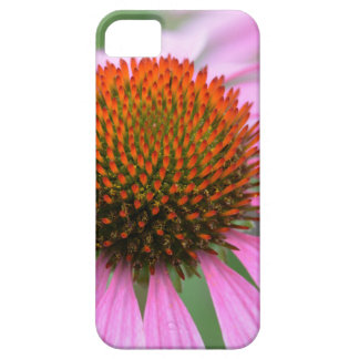 De bloem van de kegel barely there iPhone 5 hoesje