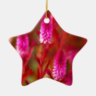 De Bloem van de pastelkleur Keramisch Ster Ornament
