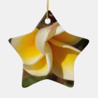 De Bloem van Frangipani Keramisch Ster Ornament