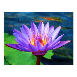 De Bloem van Lotus Briefkaart